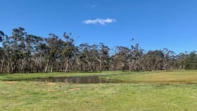 Rural / Farming commercial property for sale at 808 Wombeyan Caves Road High Range NSW 2575