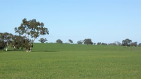 Rural / Farming commercial property for sale at 530 Ova Flow Road Keith SA 5267