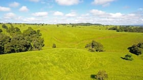 Rural / Farming commercial property for sale at Butchers Creek QLD 4885