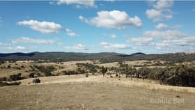 Rural / Farming commercial property for sale at Lot 2 Barelli Stanthorpe QLD 4380