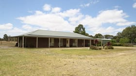 Rural / Farming commercial property for sale at 156 Kennys Road, Wild Dog Valley Naracoorte SA 5271