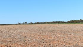Rural / Farming commercial property for sale at 14743 Augusta Highway Baroota SA 5495