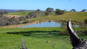 Rural / Farming commercial property for sale at Lot 41 WESTERN RIVER ROAD Western River SA 5223