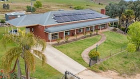 Rural / Farming commercial property for sale at 165 Phillips Road Castle Creek VIC 3691