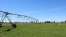 Rural / Farming commercial property sold at 529 Morambro Road Naracoorte SA 5271