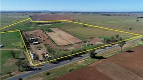 Rural / Farming commercial property for sale at Wattle Grove 832 The Bogan Way Forbes NSW 2871