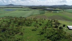 Rural / Farming commercial property for sale at 87 Jeppesens Road Bloomsbury QLD 4799