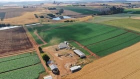 Rural / Farming commercial property for sale at 246 Valleyfield Road Sassafras TAS 7307