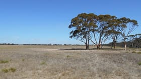 Rural / Farming commercial property for sale at 409 DIXON ROAD Pingrup WA 6343