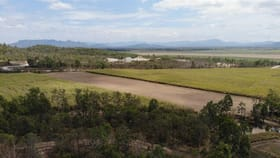 Rural / Farming commercial property for sale at 109 Lannercost Extention Road Lannercost QLD 4850