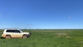 Rural / Farming commercial property for sale at Glenroy 4938 Peisley Road Nyngan NSW 2825