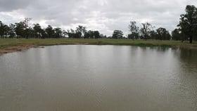 Rural / Farming commercial property for sale at 0 Lockwood Road Yarranlea QLD 4356
