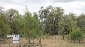 Rural / Farming commercial property for sale at Lot 19 Mountain Creek Road Tenterfield NSW 2372