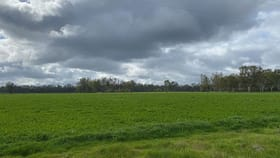 Rural / Farming commercial property for sale at 127 Orr's Road Cohuna VIC 3568