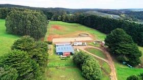 Rural / Farming commercial property for sale at 42 Bilsons Road Irishtown TAS 7330
