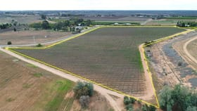 Rural / Farming commercial property for sale at Lot 2/51A Pumps Road Red Cliffs VIC 3496