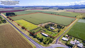 Rural / Farming commercial property for sale at 11 Beck Road Kairi QLD 4872