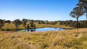Rural / Farming commercial property for sale at 58 Nowendoc Road Killawarra NSW 2429