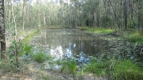 Rural / Farming commercial property for sale at Lot 2 Clearfield Road, Myrtle creek via Casino NSW 2470