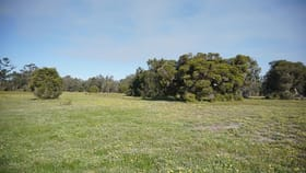 Rural / Farming commercial property for sale at Lot 800 & 801 Telephone Road Wanerie WA 6503