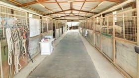 Rural / Farming commercial property for sale at 501 Snow Road Laceby VIC 3678
