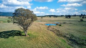 Rural / Farming commercial property for sale at 112 Glen Alice Road Rylstone NSW 2849