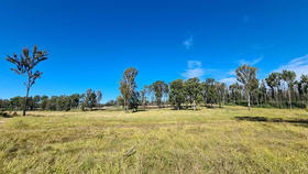 Rural / Farming commercial property for sale at 2930 Old Tenterfield Road Rappville NSW 2469
