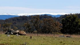 Rural / Farming commercial property for sale at 815 Avonside Road Avonside NSW 2628