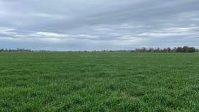 Rural / Farming commercial property for sale at 01 Hildebrands Road Leitchville VIC 3567