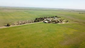 Rural / Farming commercial property for sale at 364 Przibilla Road Parrakie SA 5301