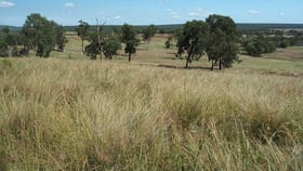 Rural / Farming commercial property for sale at 6301 CAPRICORN HIGHWAY Gogango QLD 4702