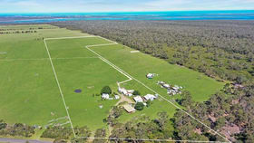 Rural / Farming commercial property for sale at 369 TI TREE ROAD Alberton VIC 3971