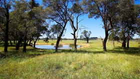 Rural / Farming commercial property for sale at 1021 Headlam Road Moss Vale NSW 2577