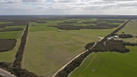 Rural / Farming commercial property for sale at 14032 Yorke Highway Warooka SA 5577