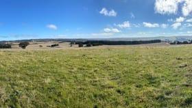 Rural / Farming commercial property for sale at 80 Merilla  Lane Parkesbourne NSW 2580