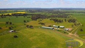 Rural / Farming commercial property for sale at Warroo NSW 2871