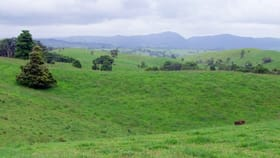 Rural / Farming commercial property for sale at Millaa Millaa QLD 4886