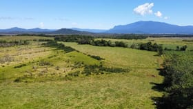 Rural / Farming commercial property for sale at 361 Dinner Creek Road Eubenangee QLD 4860