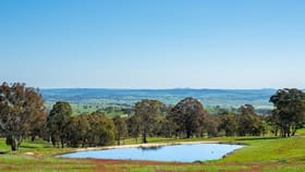 Rural / Farming commercial property for sale at Timber Ridge Road Bathurst NSW 2795