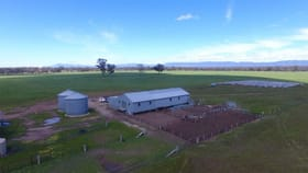 Rural / Farming commercial property for sale at Ca 26, 10A & 10B Stawell-Warracknabeal Road, Glenorchy Via Stawell VIC 3380
