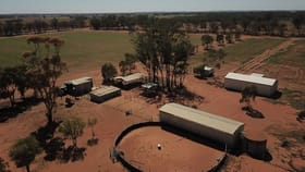 Rural / Farming commercial property for sale at 383 Mid Western Highway West Wyalong NSW 2671