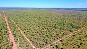 Rural / Farming commercial property for sale at 3965 Florina Rd Katherine NT 0850