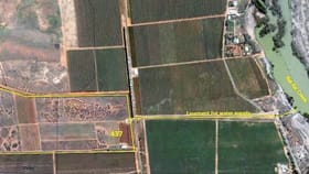 Rural / Farming commercial property for sale at 437 Wentworth Road Cooltong SA 5341
