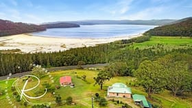 Rural / Farming commercial property for sale at 2807-2809 The Lakes Way Bungwahl NSW 2423
