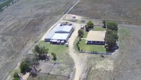 Rural / Farming commercial property for sale at 25132 Bruce Highway Gumlu QLD 4805