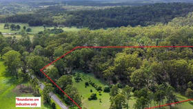 Rural / Farming commercial property for sale at 2393 Armidale Road Blaxlands Creek NSW 2460