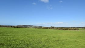 Rural / Farming commercial property for sale at Lot 1 North Coast Road Menzies SA 5223