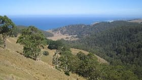 Rural / Farming commercial property sold at 355 Wild Dog Access Track Apollo Bay VIC 3233