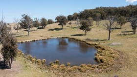 Rural / Farming commercial property for sale at 2809 Waterfall Way Hillgrove NSW 2350
