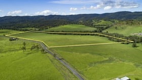 Rural / Farming commercial property for sale at Conondale QLD 4552